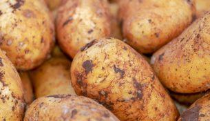 ziemniaki na pryszcze
